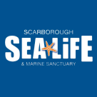 SEA LIFE and Marine Sanctuary Scarbourgh